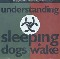 Sleeping Dogs Wake Understanding
